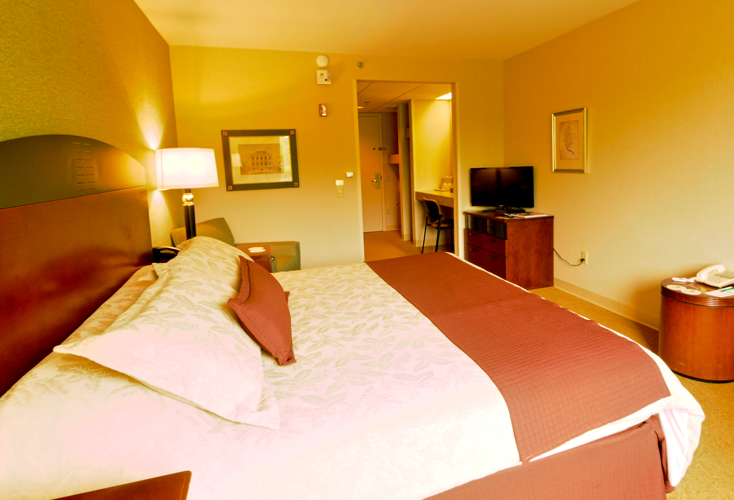 hotel room with king bed and television